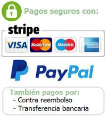 Pagos seguros Stripe Paypal Visa Mastercard